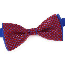 Cravates et accessoires Noeud papillon Sacha - Dandytouch - Modalova