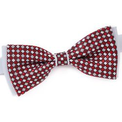 Cravates et accessoires Noeud papillon Archy - Dandytouch - Modalova